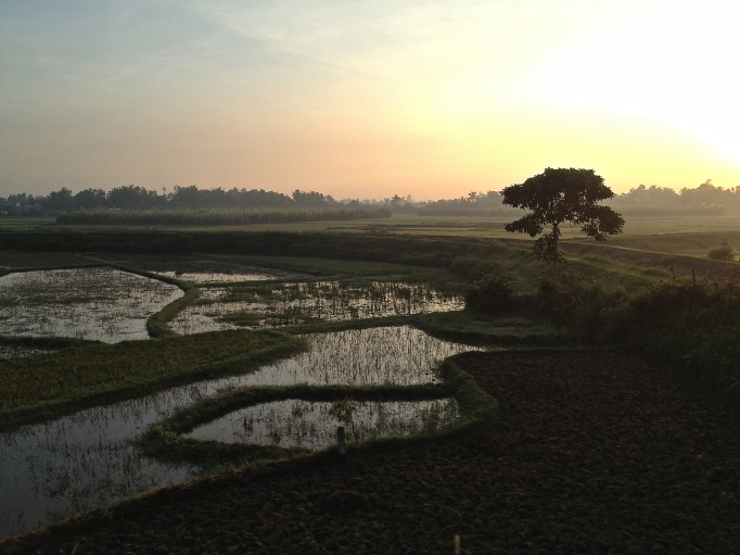 morning in Vietnam countryside