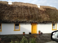 thatched house - rare now